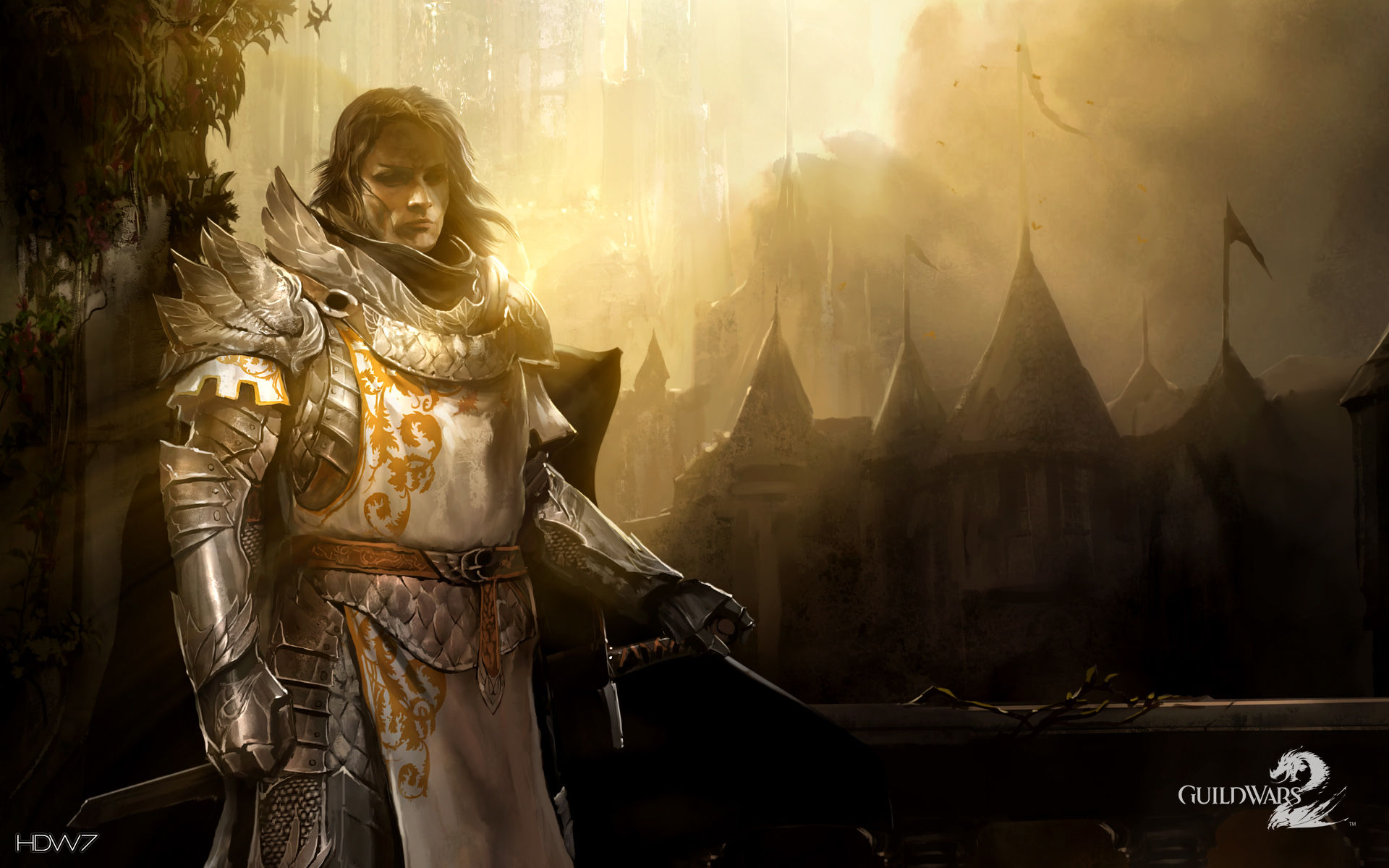 guild wars 2 gw2 human widescreen wallpaper