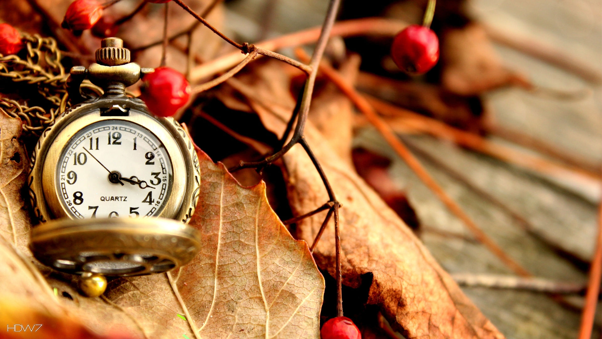 beautiful vintage watch hd 1080p wallpapers download | hd wallpaper