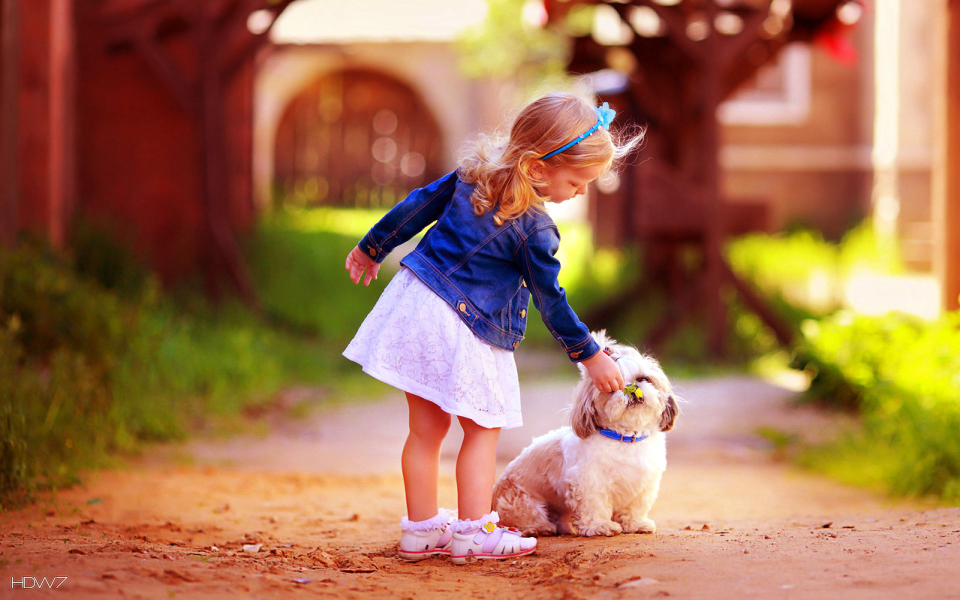 Girl With Cute Dog Friendship Hd Wallpaper Hd Wallpaper Gallery 7